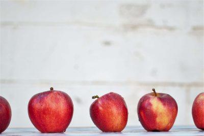 blog_fruita
