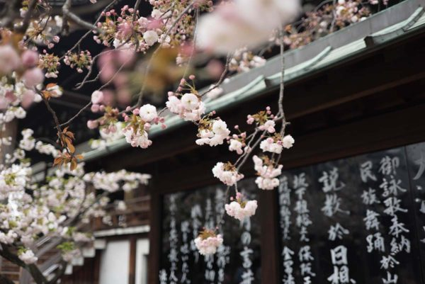 blog_japo